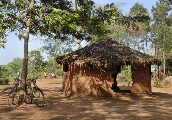 kawule-primary-before-1